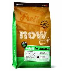 NOW Natural holistic Fresh Small Breed Red Meat Grain Free беззерновой для малых пород с ягненком