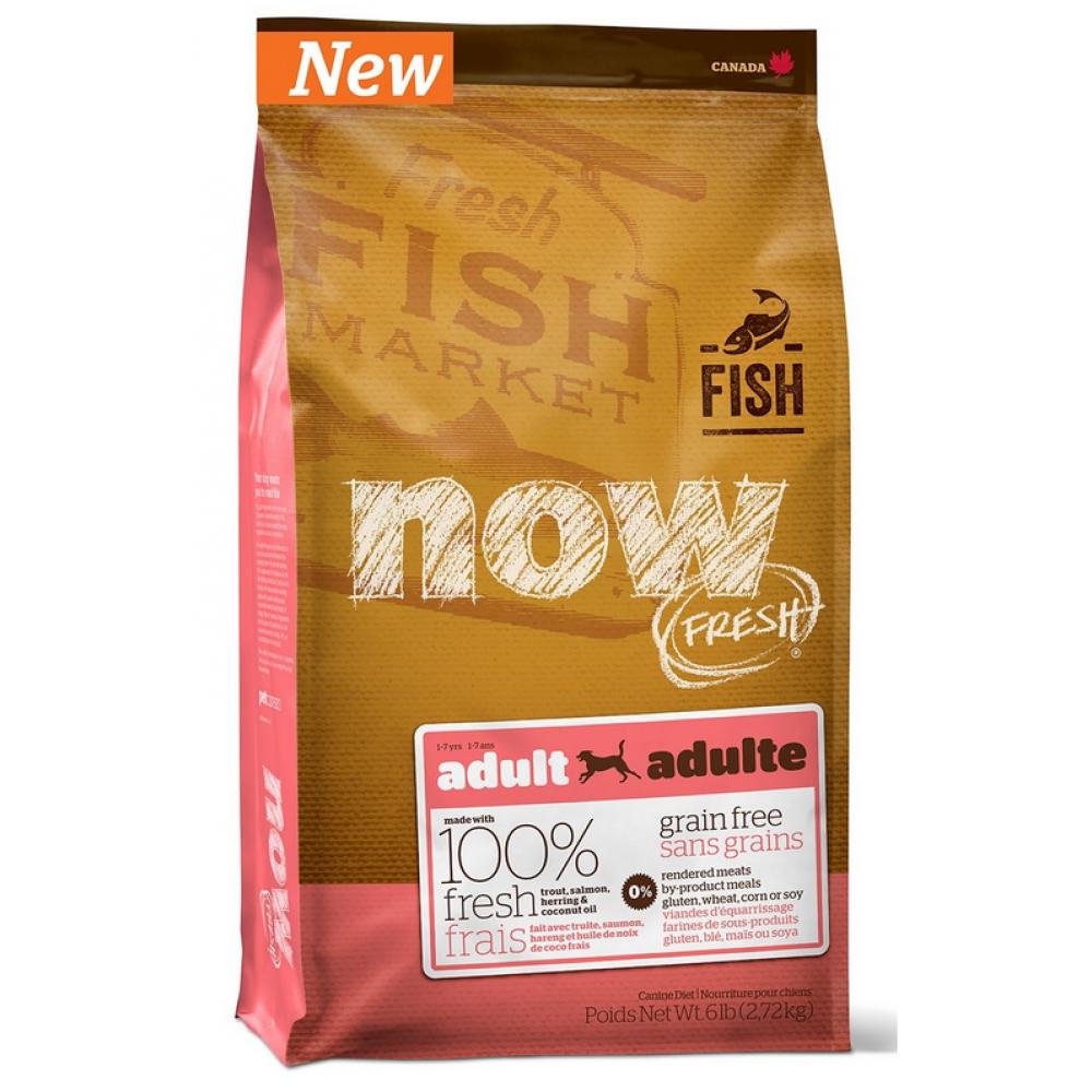 NOW Беззерновой для взр. собак с форелью и лососем для чувст. пищеварения